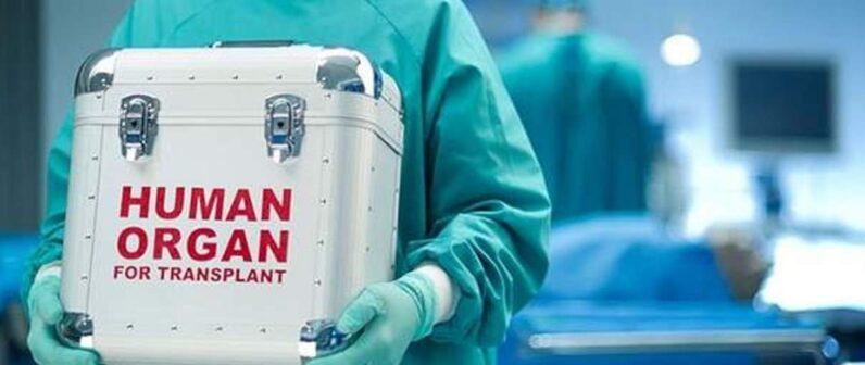 Donazione organi a cuore fermo: primo caso al Maggiore Bologna