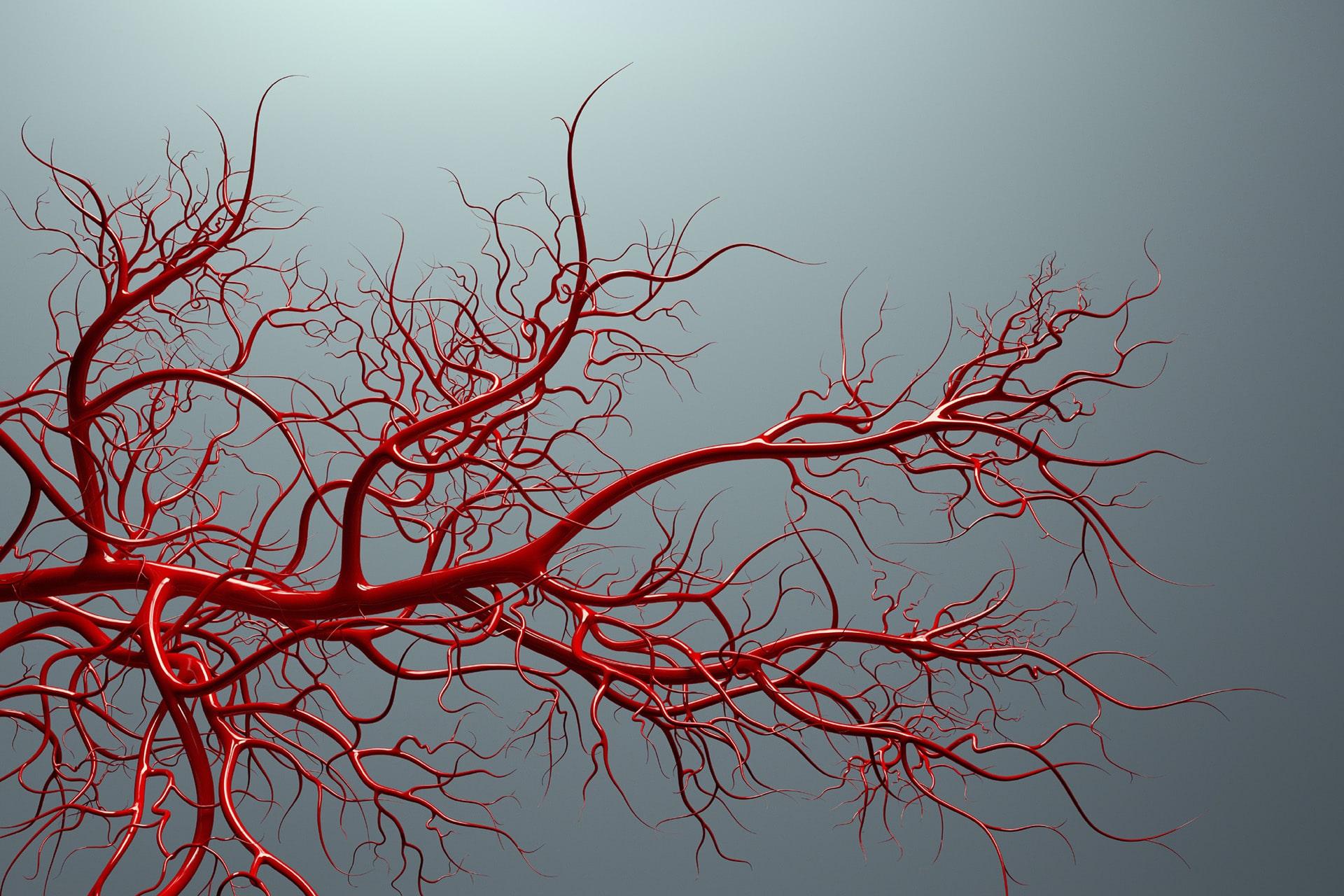 Biostampa 3D: una nuova strategia per creare vasi sanguigni