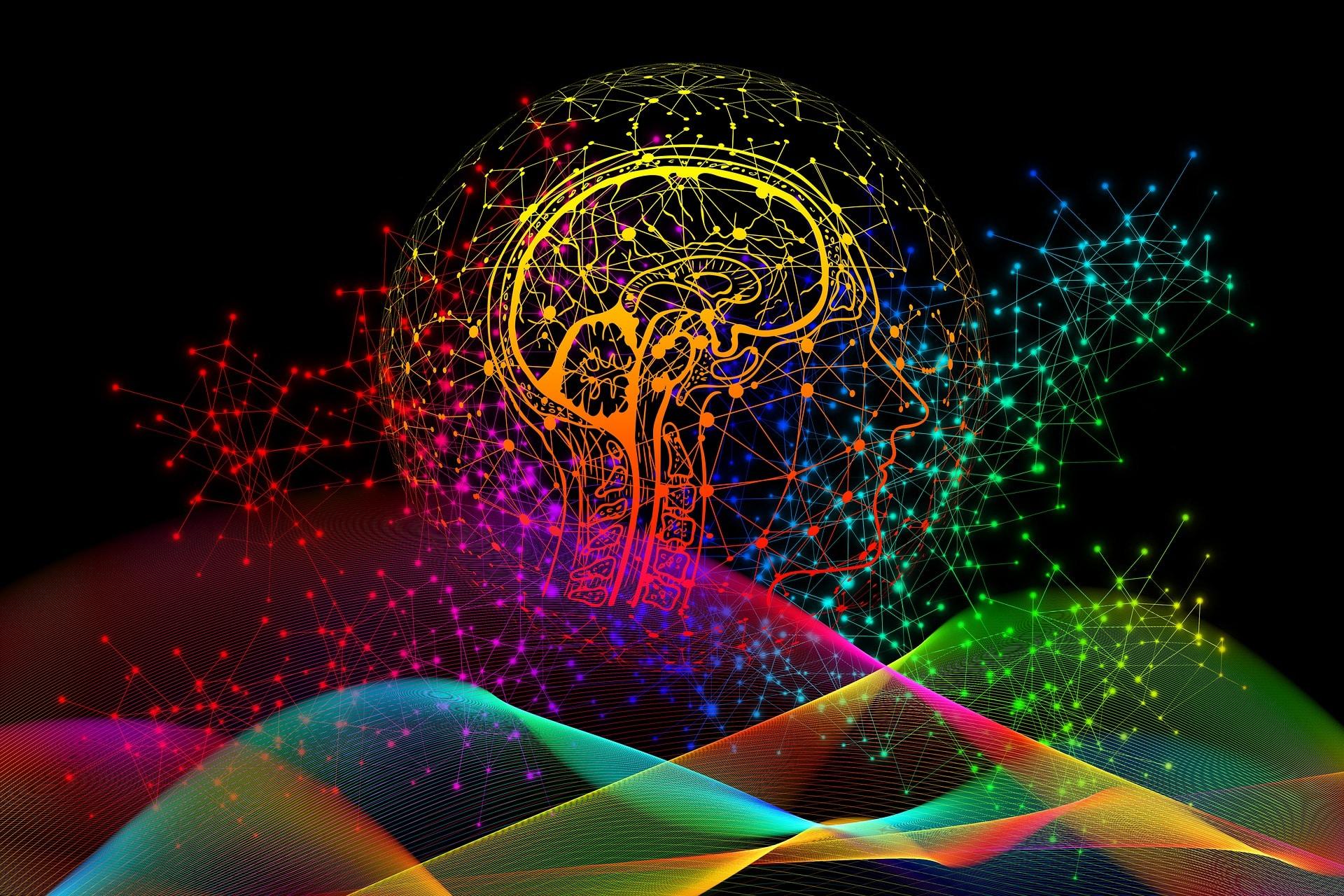 Un viaggio all'interno del cervello: cosa sono le emozioni