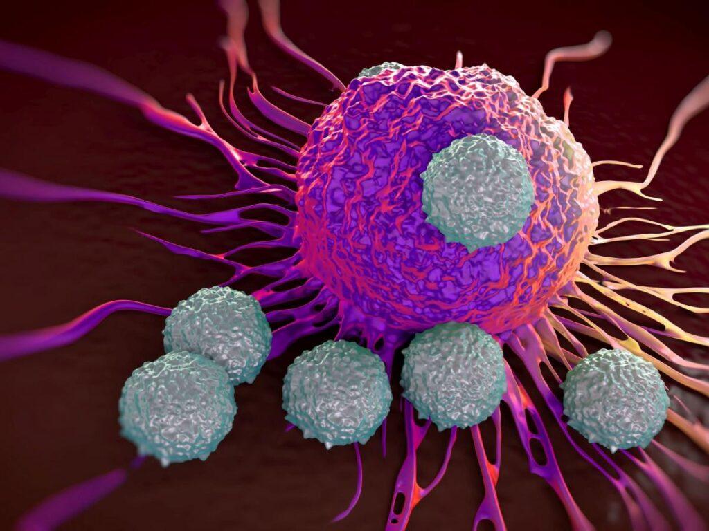 tumori immunoterapia