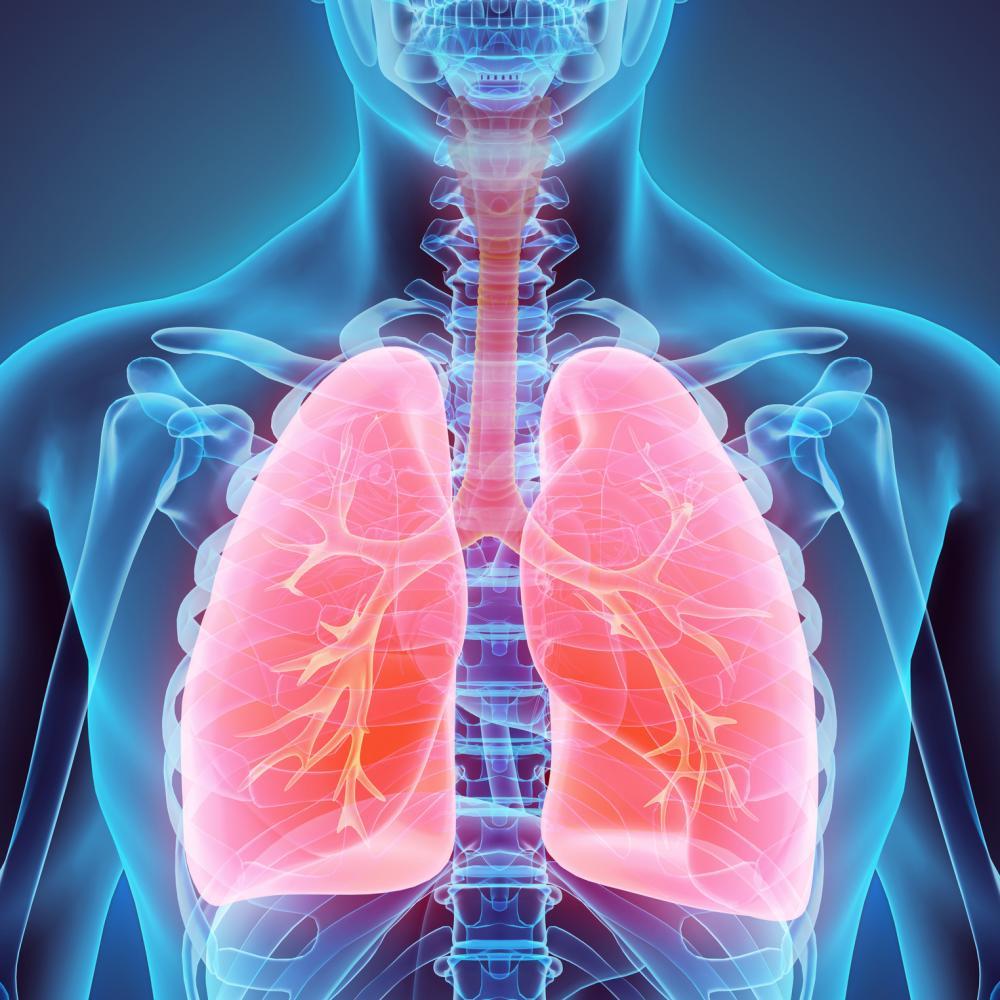 ipertensione valvola polmonare trapianto polmoni intervento cuore