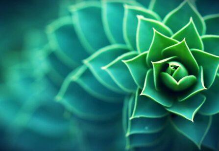 Biomimicry: la Natura come fonte di ispirazione