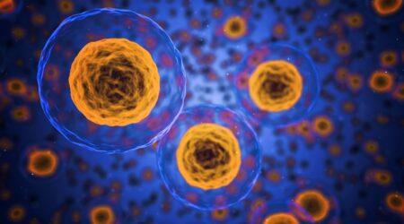 Cellule staminali cordonali: vale la pena conservarle?