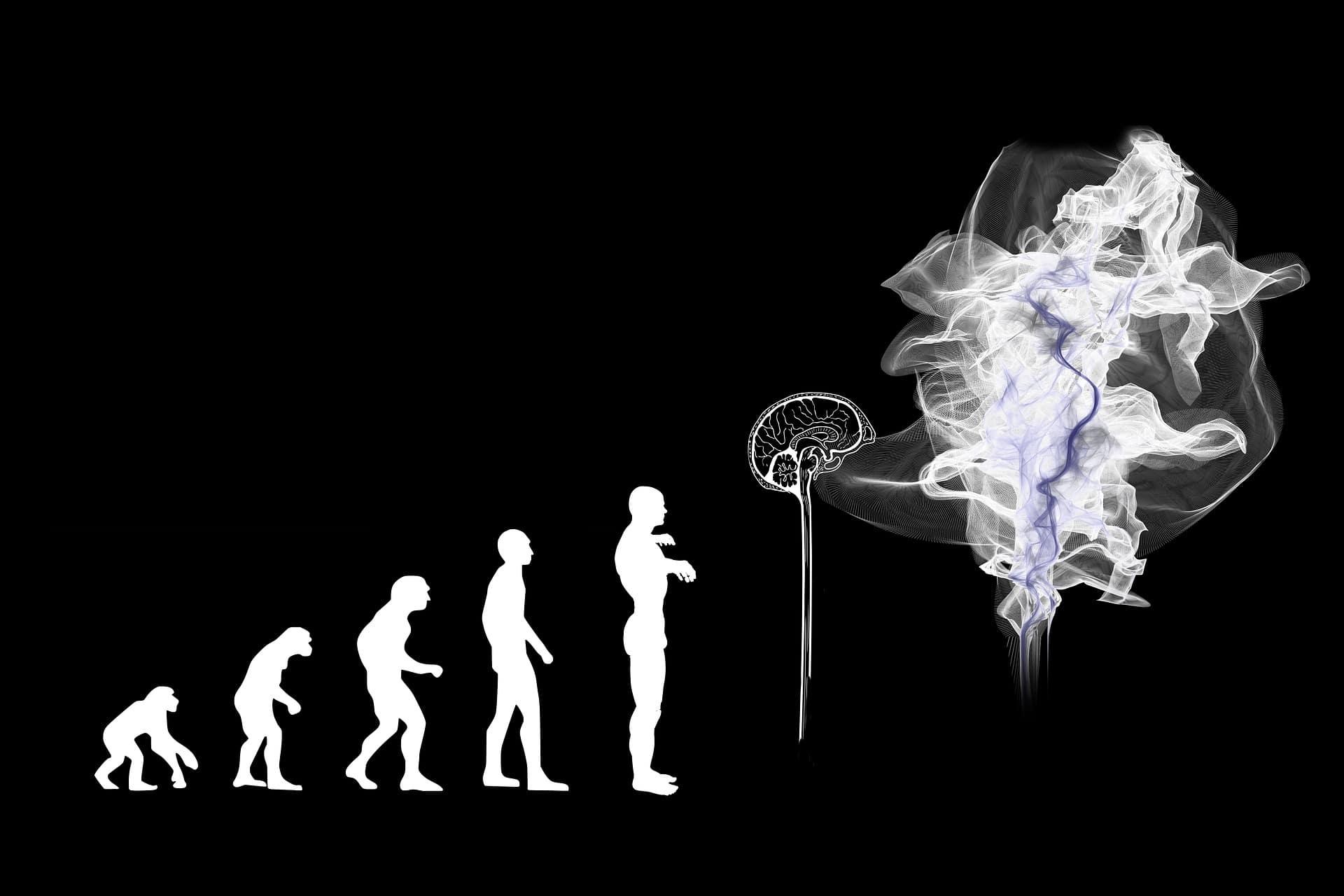 Perché il nostro cervello è più grande di quello degli altri primati?