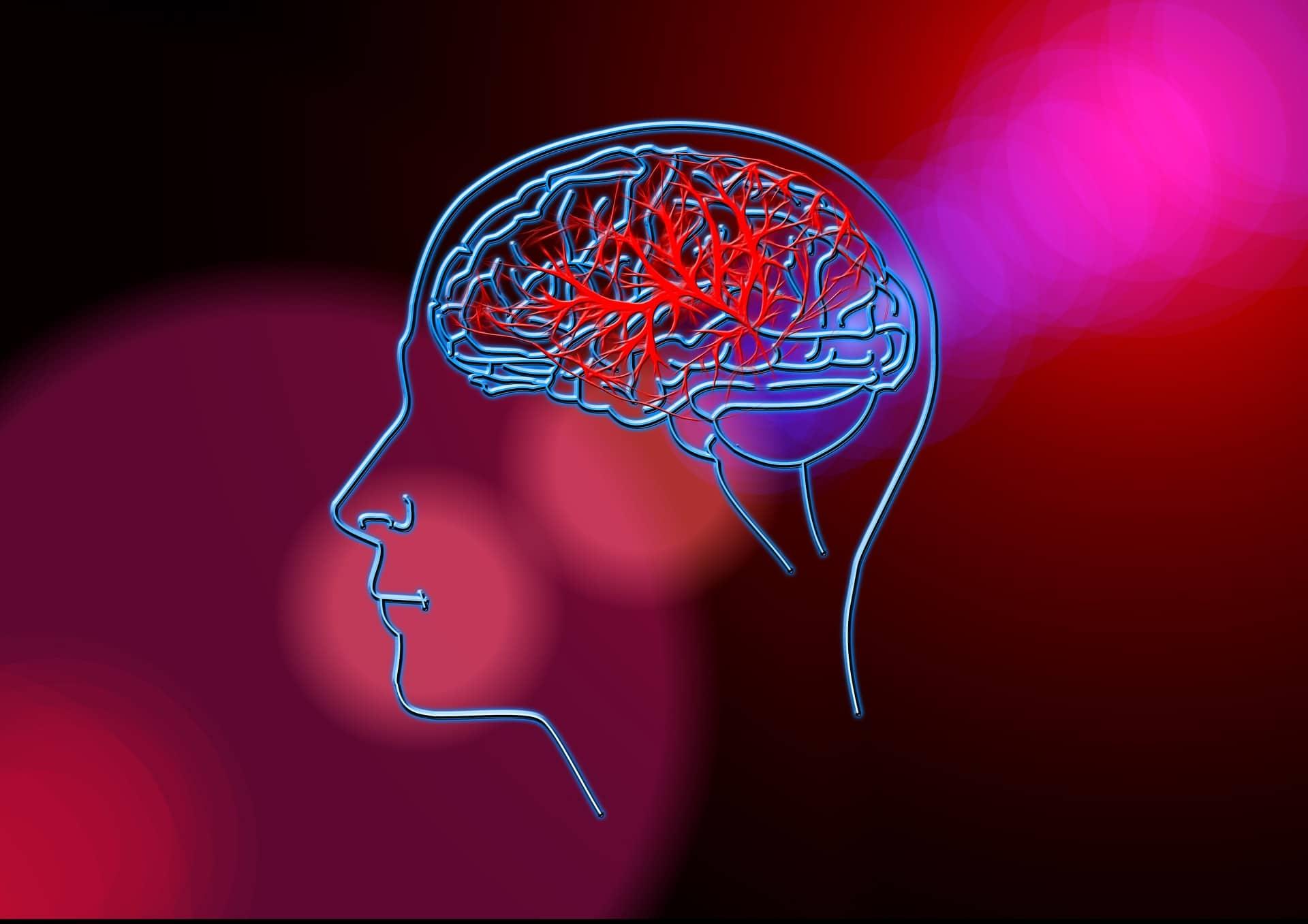 La prima interfaccia cervello-computer (BCI) per la riabilitazione post ictus. Credits: fisioterapiagm