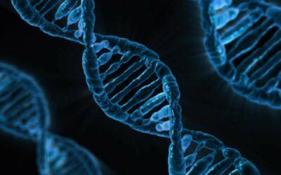 Ottenuta per la prima volta la mappa completa del genoma umano