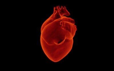 Il pacemaker temporaneo in grado di degradarsi nel corpo umano