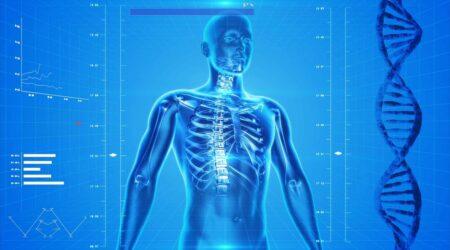 Una nano-sonda in grado di raccogliere informazioni sul corpo umano