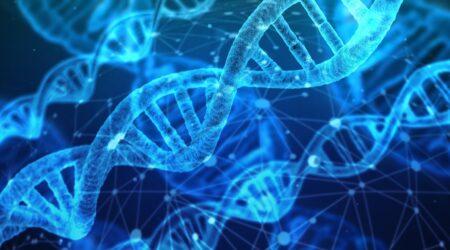 Epigenetica: un mondo che influenza la nostra vita e la nostra eredità