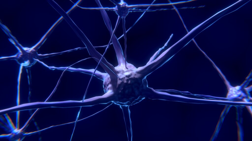 sclerosi multipla colpisce la mielina